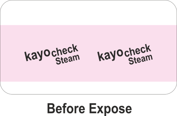 Kayo Check Steam Type 1 Indicator - Unexposed